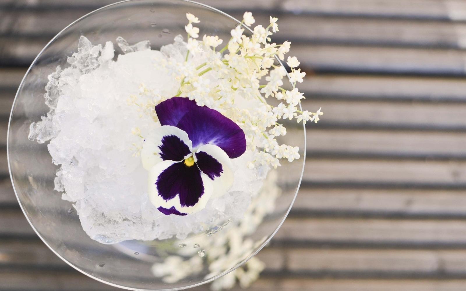 Gin with elderflower tonic - Photo: Flickr/ Urvashi Roe